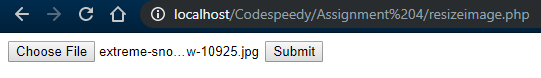 Upload button to resize an image in PHP