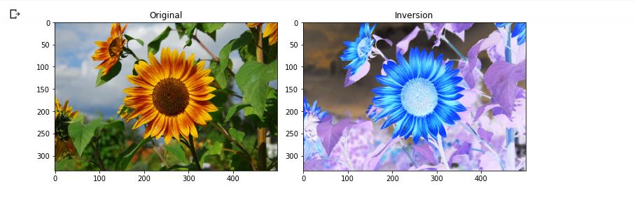 Color Inversion